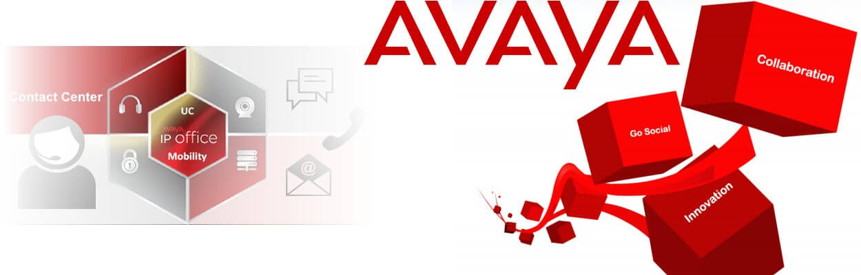 Avaya Distributor Douala